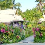 The Friendly Islander, Papiloa's, Nuku'alofa