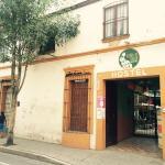 Hierba De Conejo Hostel, Oaxaca City