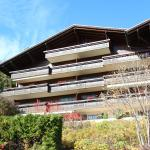 Hotel Pictures: Forêt C2, Chateau-dOex
