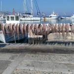 Sailing Gratsia Fitness & Spa, Naxos Chora