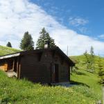 Hotel Pictures: La Montagnette, Chateau-dOex