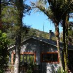 Piha Eco Sanctuary, Piha