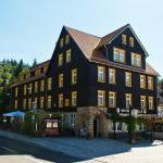 Hotel Pictures: GreenLine Ferienhotel Forelle, Thale