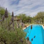 Hotelfoto's: Cabañas de Montaña Rio Amarillo, Chilecito