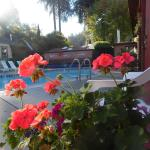 Riverlane Resort,  Guerneville