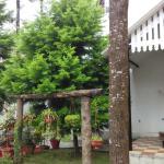 The Raintrees Resorts,  Yercaud