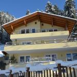Photos de l'hôtel: Appart Steinberger, Ramsau im Zillertal