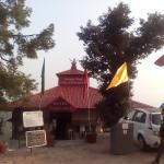 Jungle Hut, Dharamshala