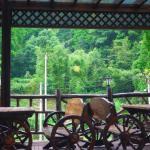 Moganshan Bamboo View Guesthouse, Deqing