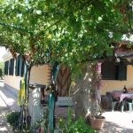 Domus Trebini, Tortolì