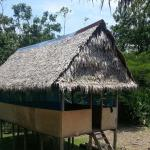 Selvaventura Ecolodge Iquitos, Mazán