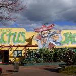 Cactus Jacks Backpackers, Rotorua