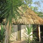 Hotel Pictures: Chaya Maya Jungle Lodge, Teakettle Village