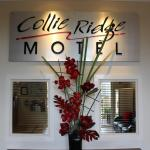 Fotografie hotelů: Collie Ridge Motel, Collie