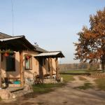 Hotel Pictures: Shadrin Village House, Zaluzzie