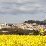 Collis Paradisi, Santa Maria degli Angeli