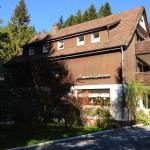 Hotel Pictures: Parkschlößchen Elvira Jagemann, Wildemann