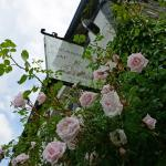 Hotel Pictures: The Mulberry Inn, Llangollen