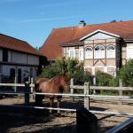 Hotel Pictures: Ferienhof Hanum, Hanum