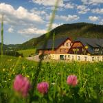 Hotellbilder: Ferienstadl - Hammerau, Göstling an der Ybbs