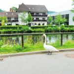 Hotel Schiff Nagold, Nagold