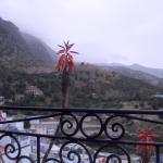 Dar Lbakal,  Chefchaouene
