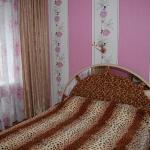 Uyutny Dom Apartment,  Pskov