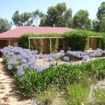 Hotelbilleder: Bendigo Short Term Accommodation, Bendigo