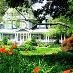 Cedars & Beeches Bed & Breakfast, Long Branch