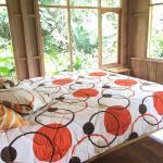 Hotel Pictures: La Casa de Cecilia, Mindo