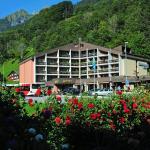 Hotel Pictures: Hotel Sardona, Elm