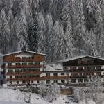 Hotel Des Alpes, Cortina d'Ampezzo