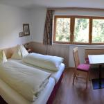Hotel Pictures: Pension Leitner, Hermagor