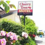 Cherry Tree Lodge Motel, Christchurch
