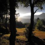 Hotel Pictures: Camping Maçanet de Cabrenys, Maçanet de Cabrenys