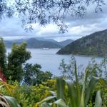 A Sea View B&B,  Picton