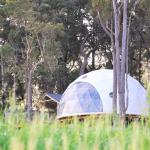 酒店图片: Mile End Glamping, Yelverton