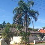 Hotel Pictures: Cronulla Beach House B&B, Cronulla