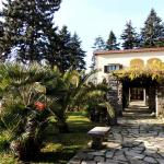 Villa Olga, Mezzegra