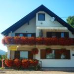 House Anamarija,  Seliste Dreznicko