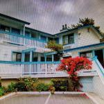 Arbor Inn Monterey, Monterey