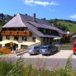 Hotel Pictures: Haus Schöneck, Todtnauberg