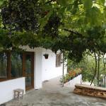 Hotel Pictures: Villa Nanchevi, Gramatikovo