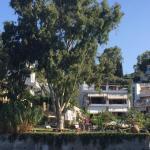 Roditses Beach Sea Front Apartments, Samos