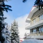 Mountains House, Almaty