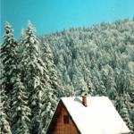 Holiday Home Ljubicica, Mitrovac