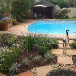 Calico Guest House, Port Elizabeth