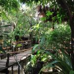 Mayom Garden, Baan Tai