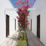 Hotel Solara,  Conca Specchiulla