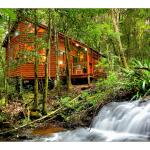 Hotellbilder: The Mouses House Rainforest Retreat, Springbrook